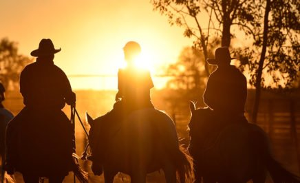 Riders on horses at sunset. © Wayne Quilliam