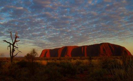 Uluru. © Flickr/Tchami