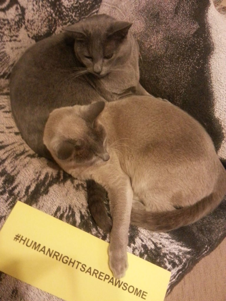 Furry friends defending human rights.